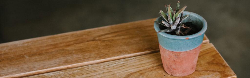 KORUs Blog: Mit zufriedenen Kunden lässt sich kein Blumentopf gewinnen